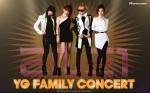 2010ygfamilyconcert_2ne1_1920