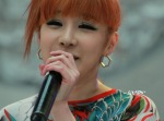 2NE1_110417_angel-price-music-feastival_27